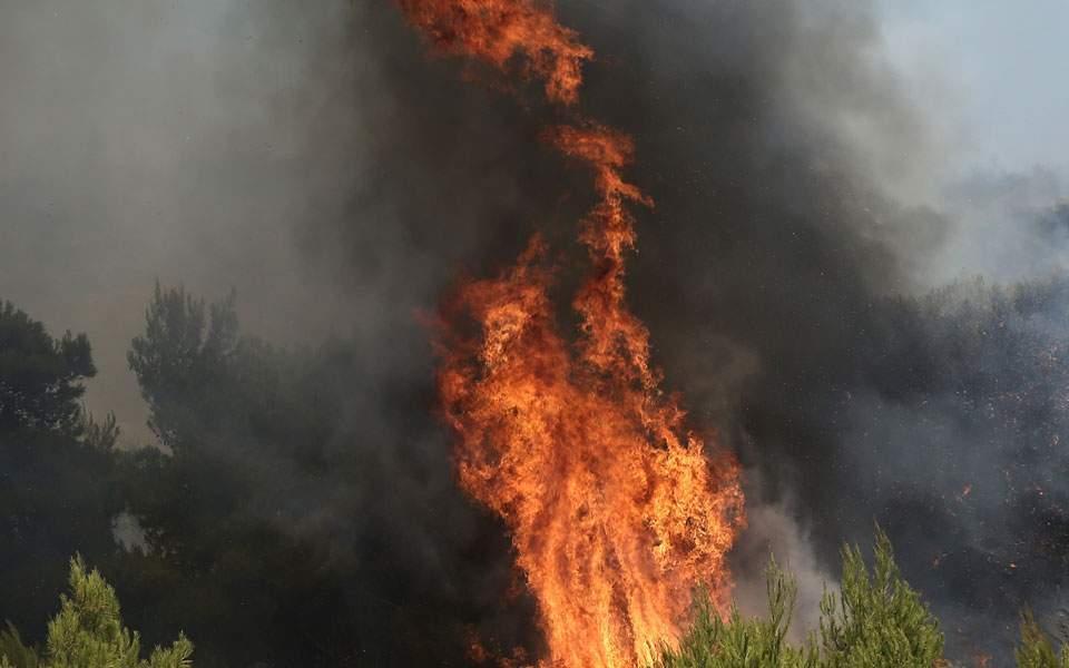 Κεφαλονιά: Μεγάλη πυρκαγιά στην περιοχή Αννινάτα