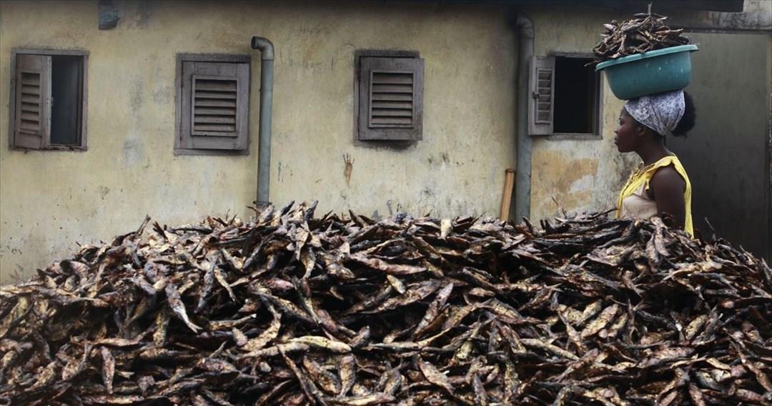 Οικολογικό πλαστικό από ψάρια